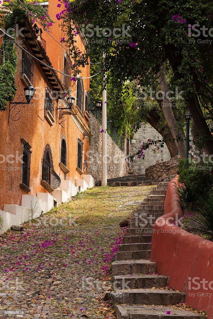 rustic street leading uphill stock photo