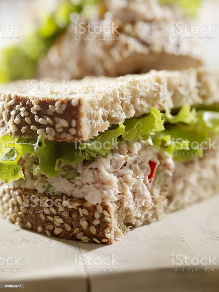 Rustic Tuna Fish Sandwich with Lettuce royalty-free stock photo
