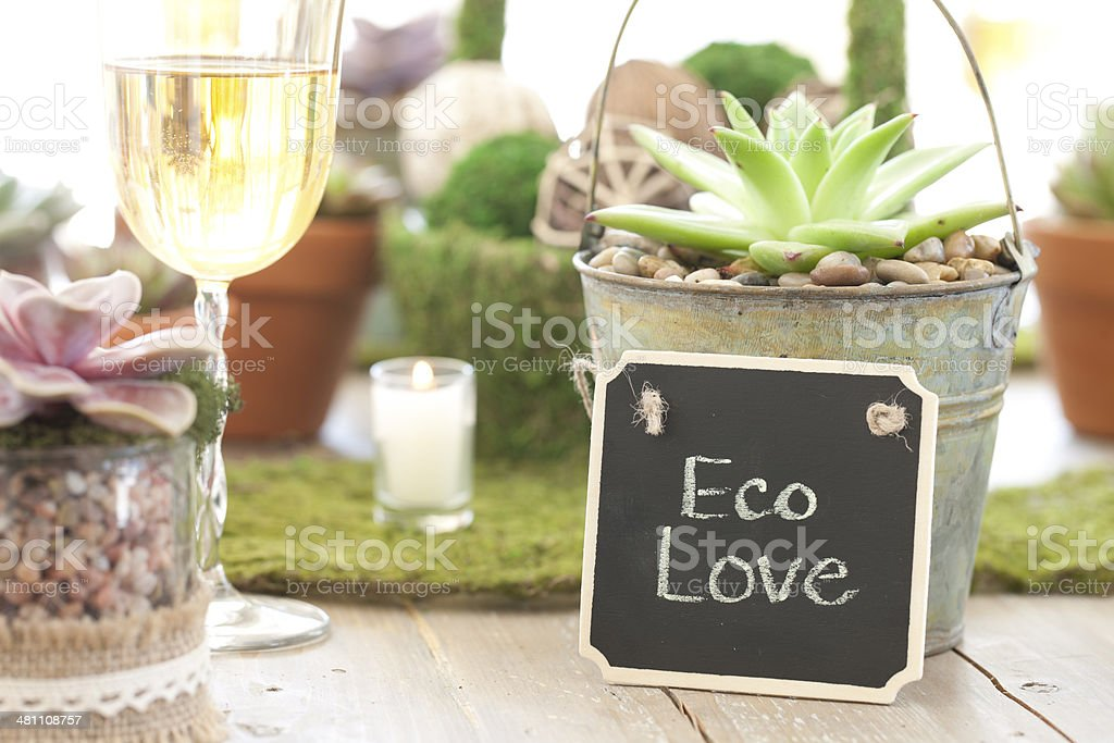Rustic Wedding Dining Table royalty-free stock photo