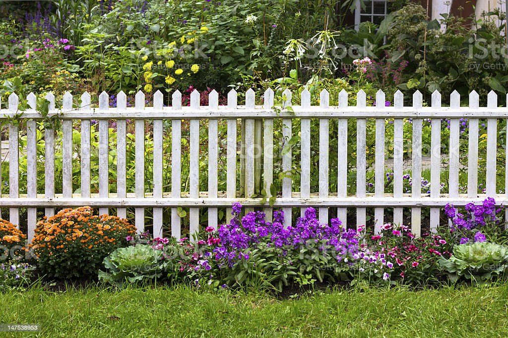 Rustic White Picket Fence stock photo