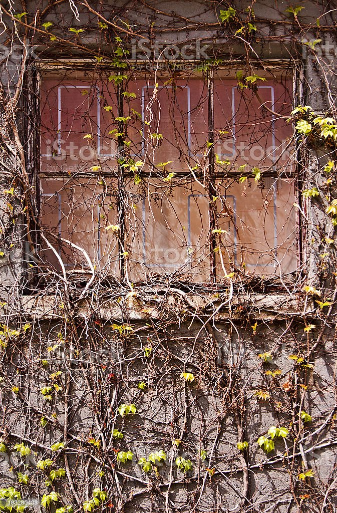 Rustic Window royalty-free stock photo