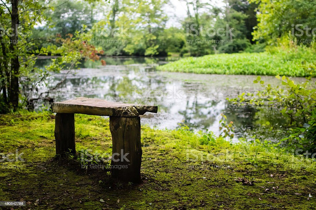 Rustic Wooden Bench Overlooking Pond stock photo