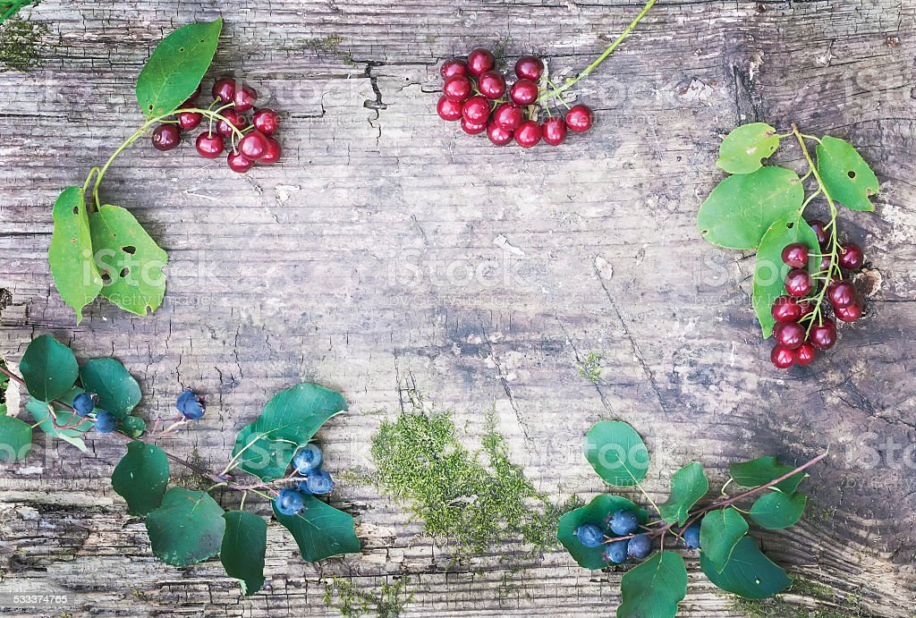 Rustic wooden board with forest berries branchlets stock photo
