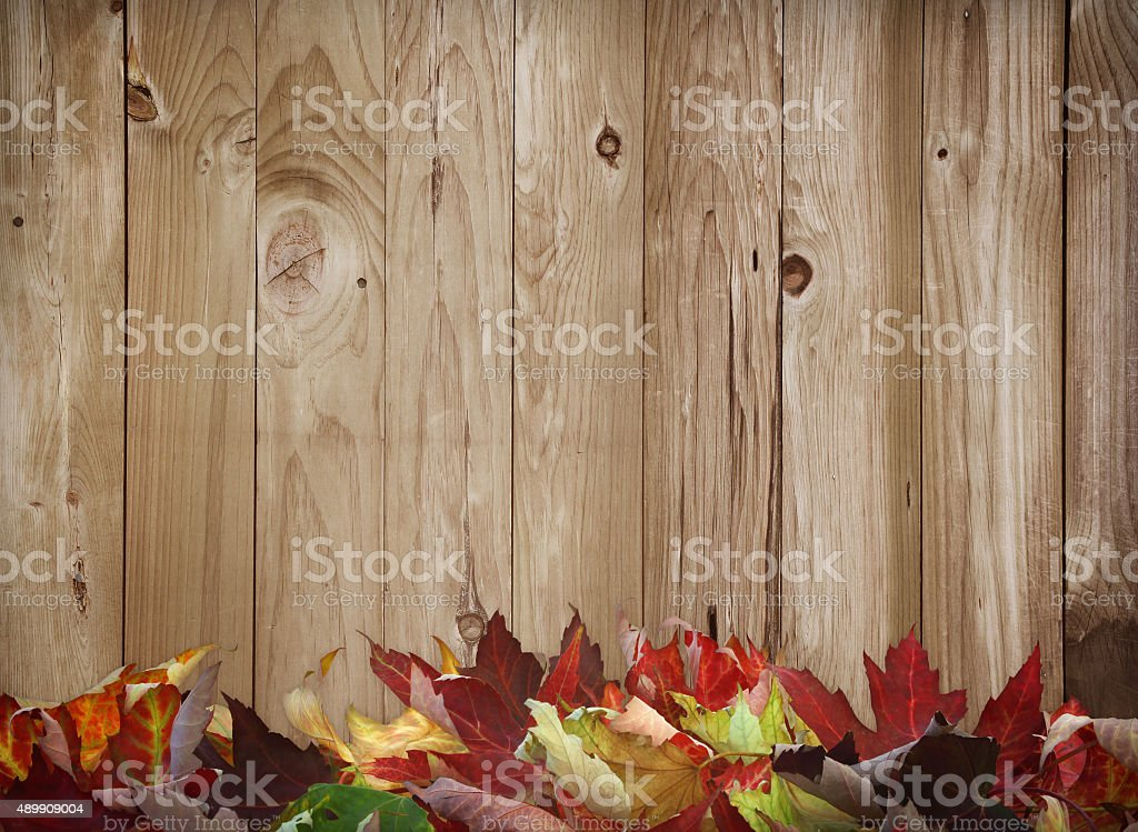 Rustic wooden fall leaves border stock photo