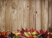 Rustic wooden fall leaves border