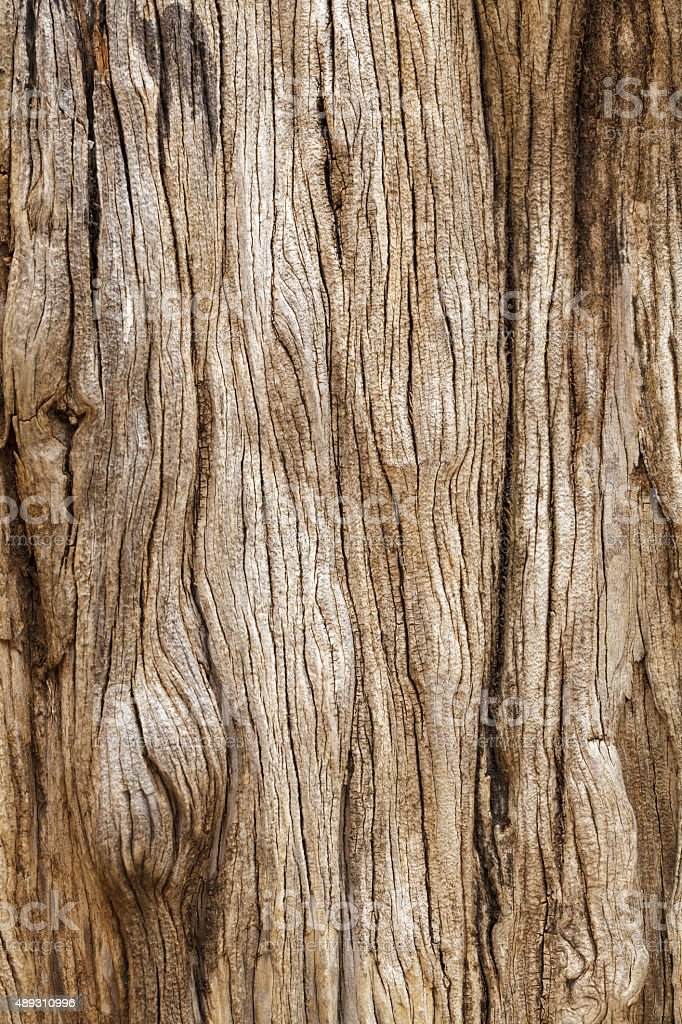 Rustic wooden texture stock photo