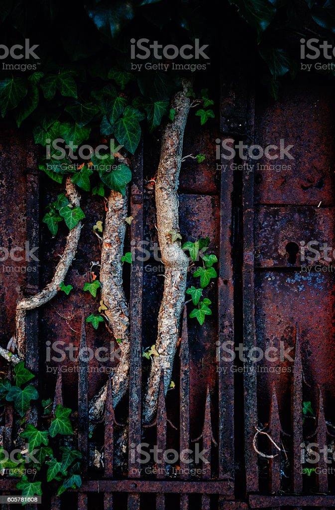Rusty abandoned gate stock photo