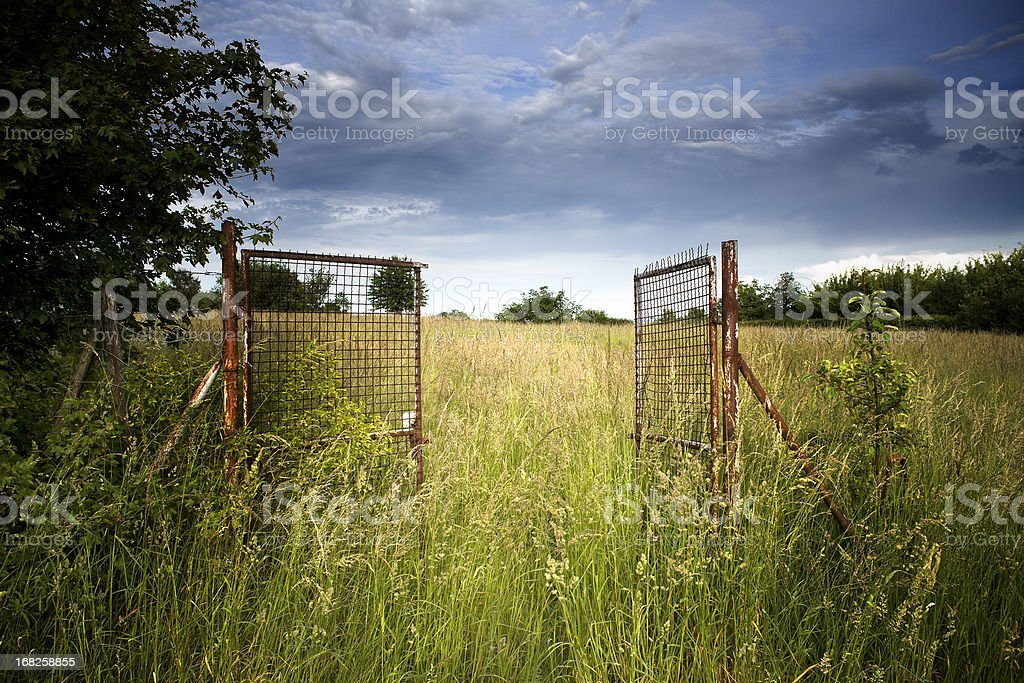 Rusty gate to a summer meadow stock photo