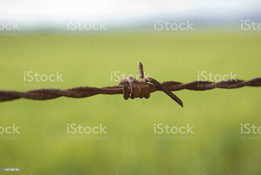 Rusty old barb wire surrounding farming property stock photo