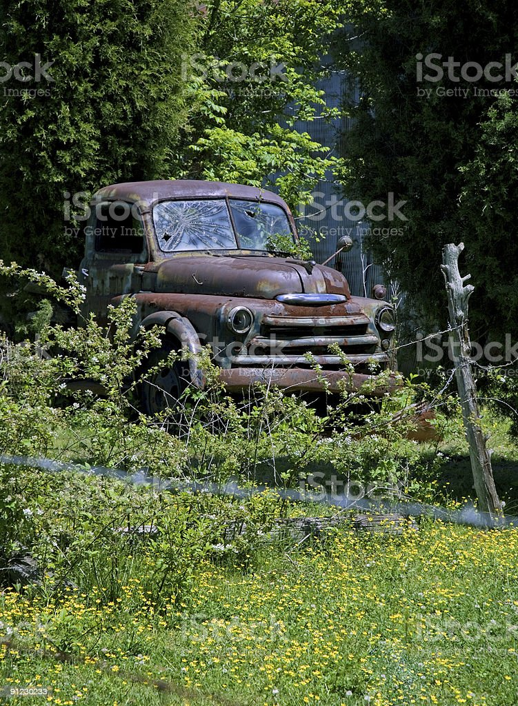 Rusty Old Truck in Spring Flowers royalty-free stock photo