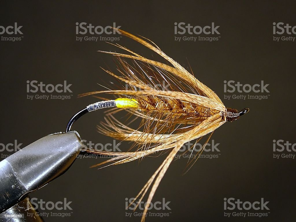 Rusty Spider Spey Fly royalty-free stock photo