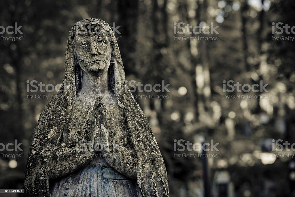 Rusty Virgin Mary on Shadows royalty-free stock photo