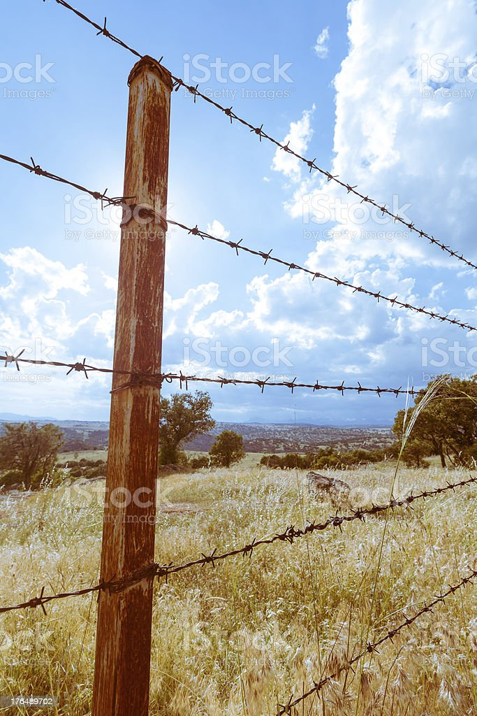 Rusty wire fence stock photo