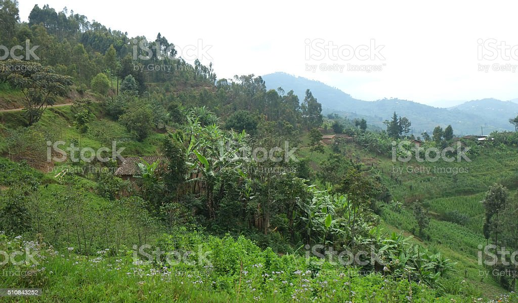 Rwanda: landscape in the north of the country stock photo