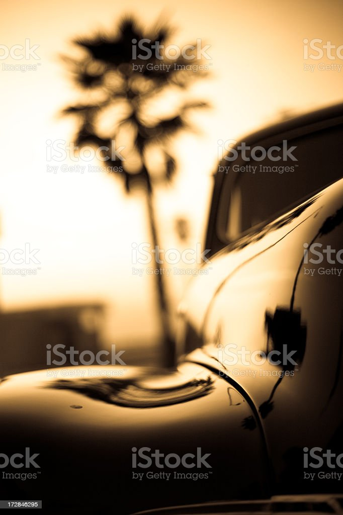 1940's Classic Car & Palm Tree stock photo