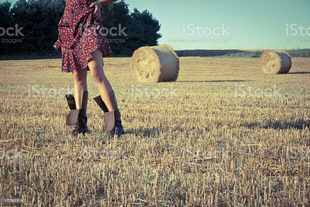 20 왜고너의 여자아이 아름다운 레그스 필드에 royalty-free 스톡 사진