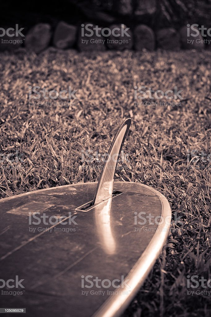 70's Retro Surfboard and Fin Profile royalty-free stock photo