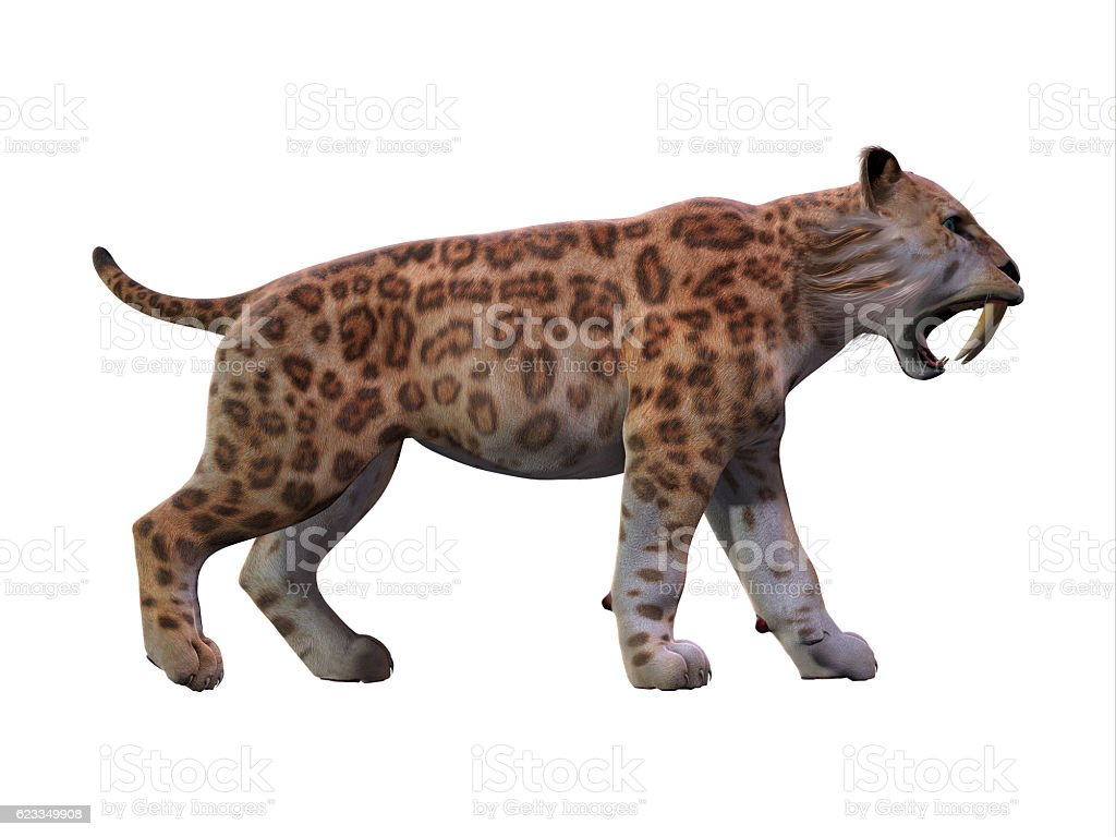 Saber-toothed Cat Profile stock photo