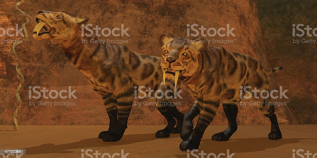 Saber-Toothed Tiger Cave stock photo