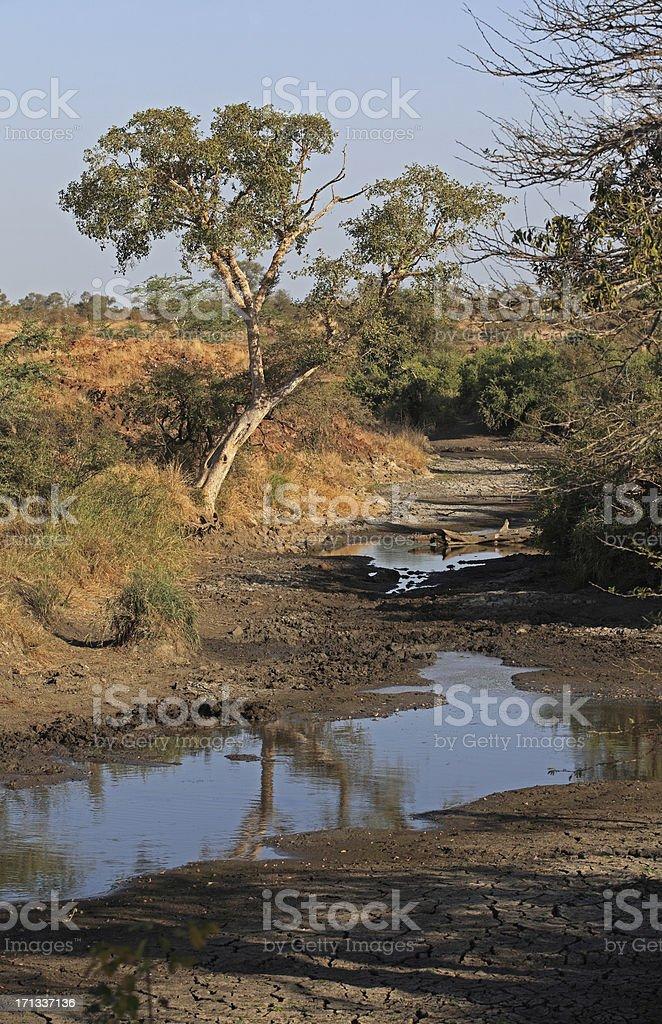 Sabie river stock photo