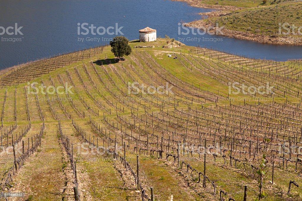 Sabor River in Douro Valley stock photo