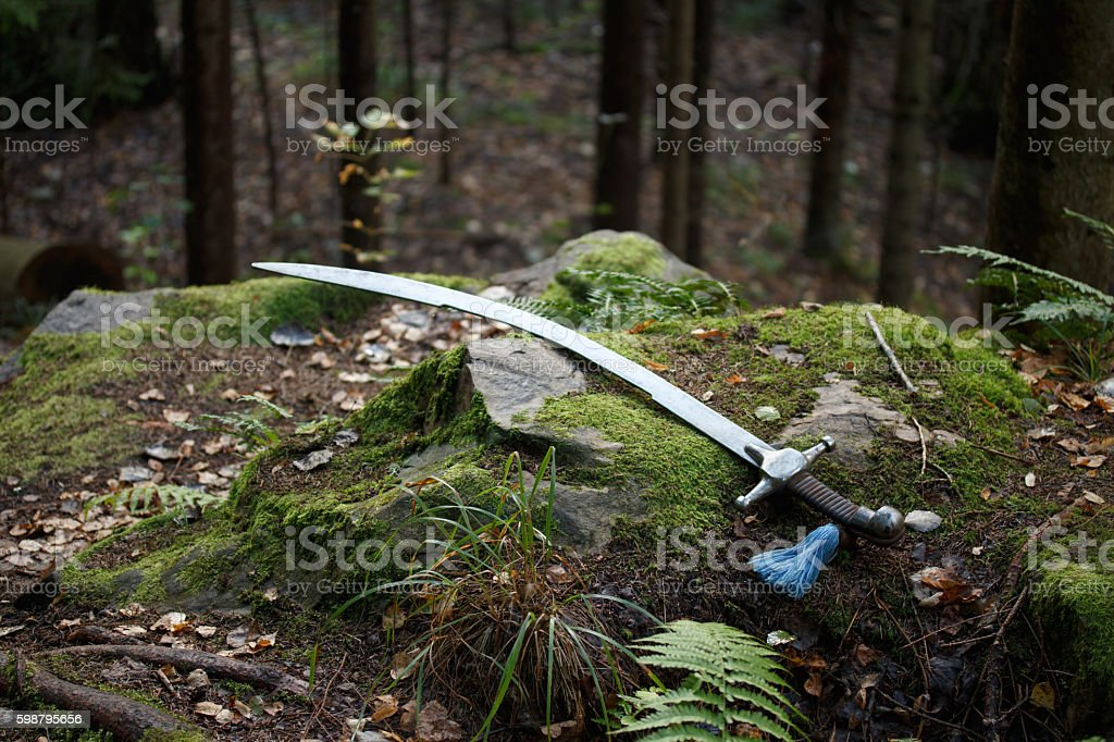 Sabre on mossy cliff stock photo