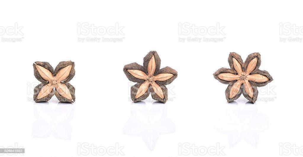 sacha inchi, sacha mani or star inca peanut seed stock photo