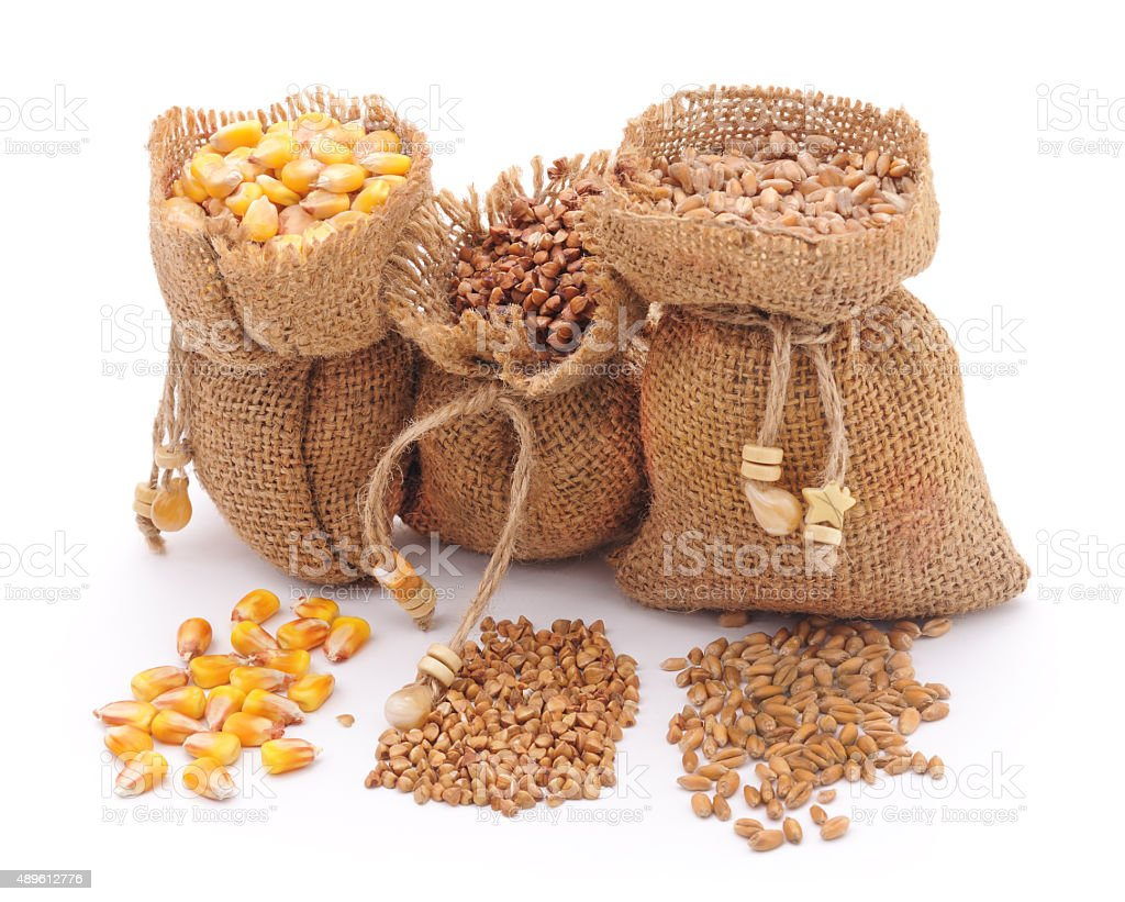 Sacks grain. stock photo