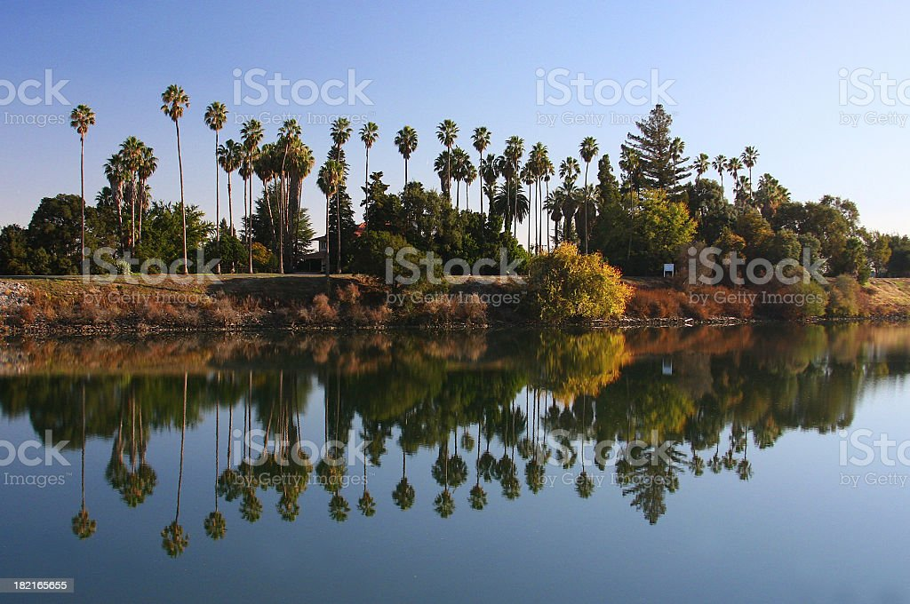 Sacramento delta tree and river scenic in Northern California stock photo