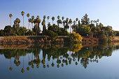 Sacramento delta tree and river scenic in Northern California