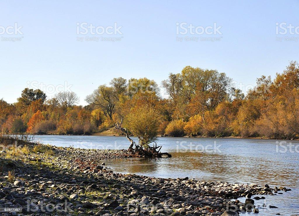 Sacramento River in the Fall royalty-free stock photo