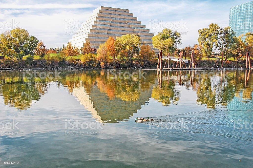 Sacramento River Reflection stock photo