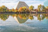 Sacramento River Reflection