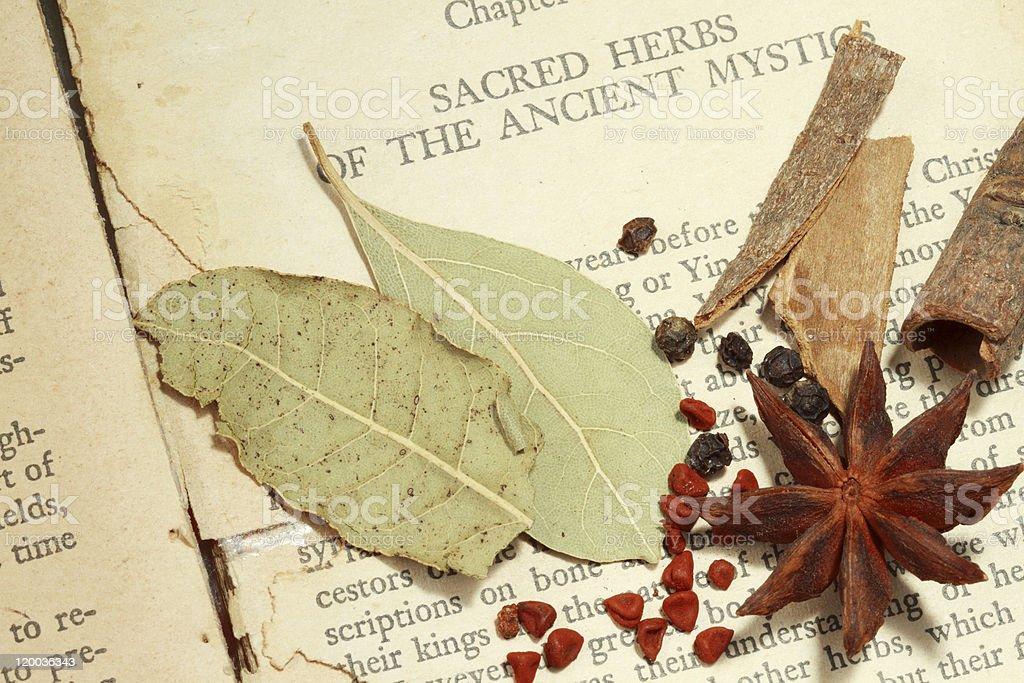 Sacred herbs royalty-free stock photo