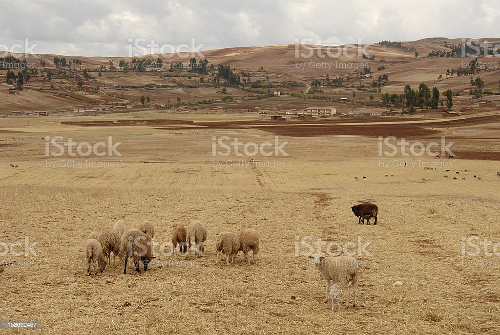 Sacred valley stock photo