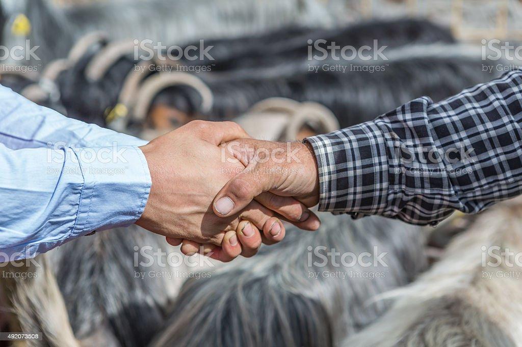 Sacrificial market stock photo