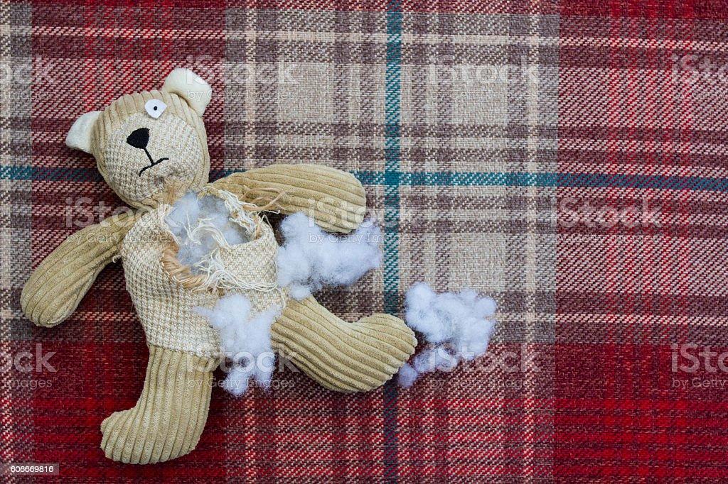 Sad And a Damaged Teddy Bear stock photo
