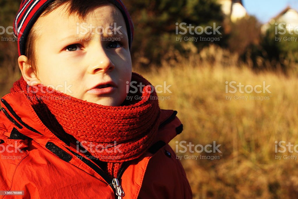 sad boy in the country royalty-free stock photo