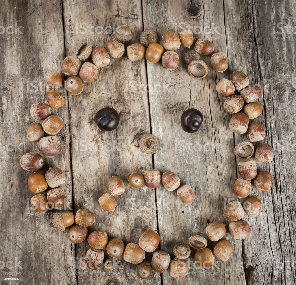 Sad face of acorns on a wooden background royalty-free stock photo