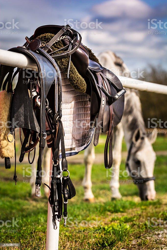 Saddle and grazing horse stock photo