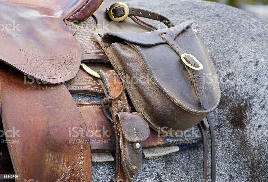 Saddle Bag on Horse stock photo