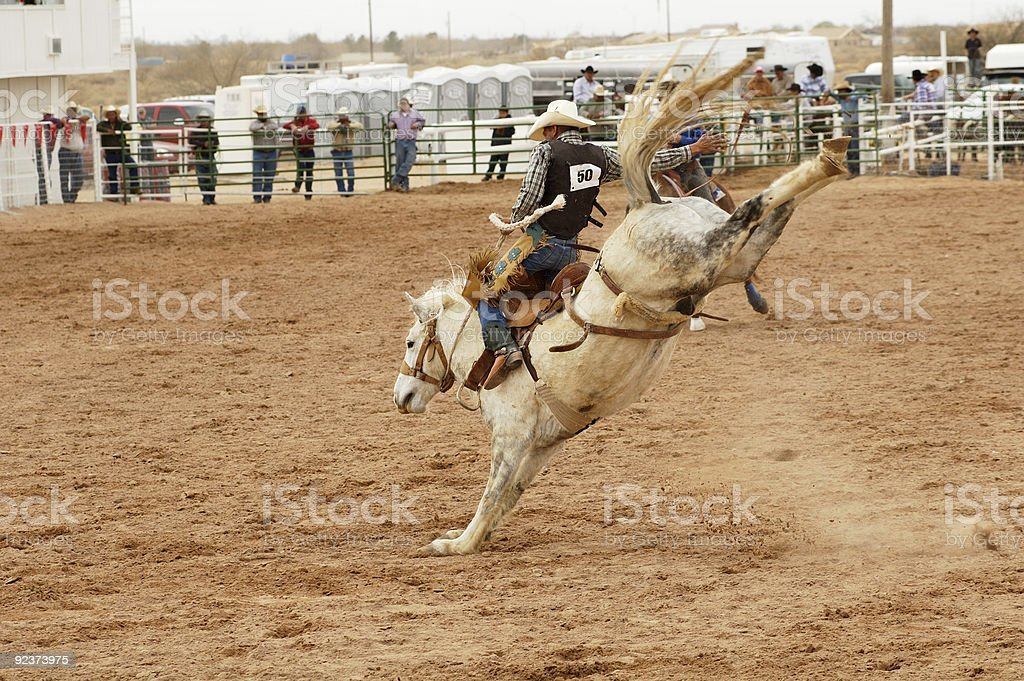Saddle bronc 1 stock photo