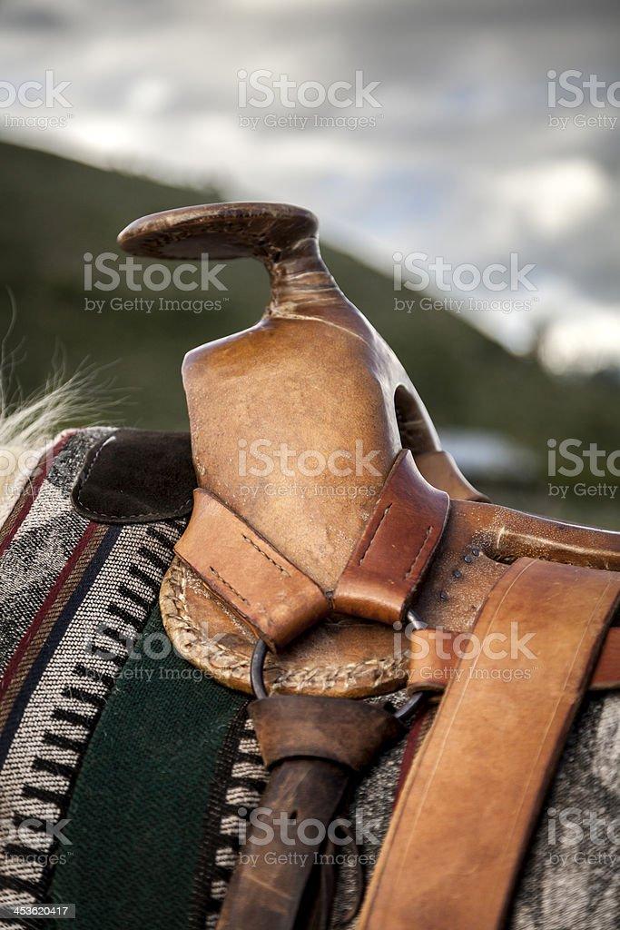 Saddle Horn stock photo