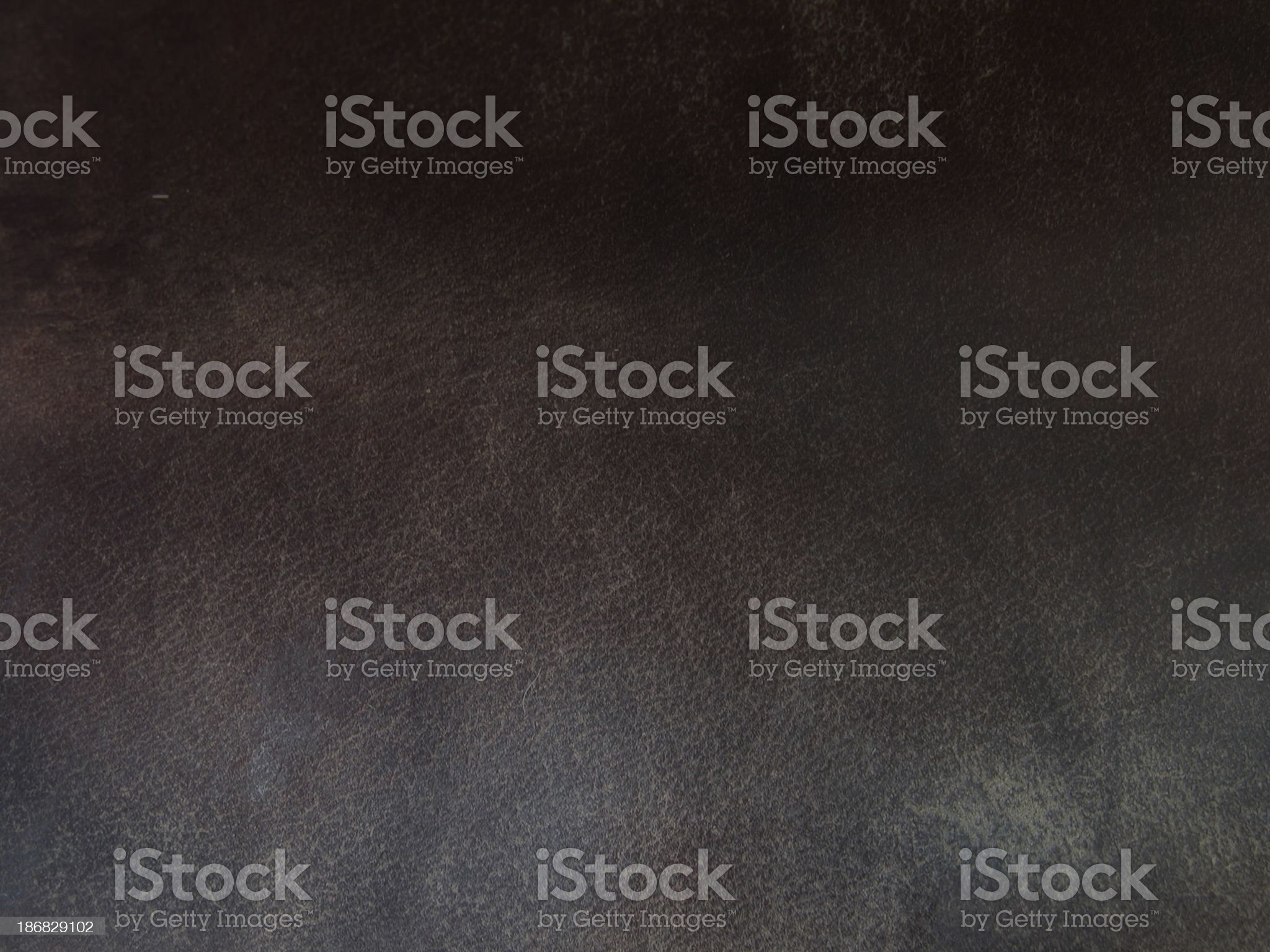 Saddle Leather royalty-free stock photo
