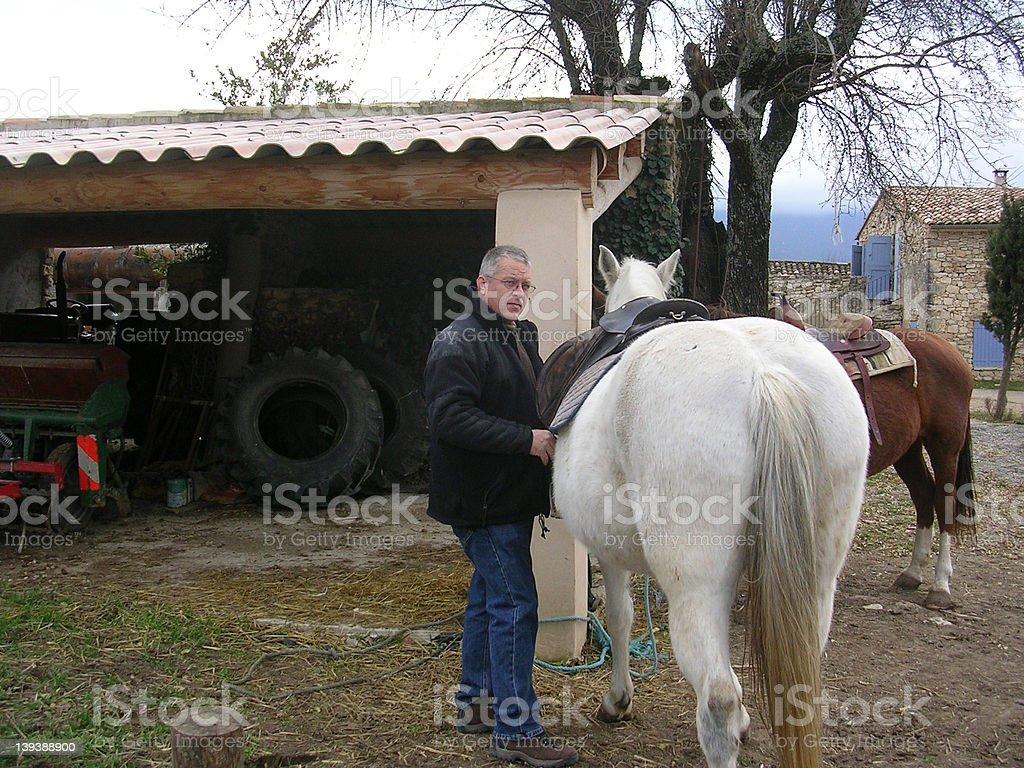 Saddle Up 1 stock photo