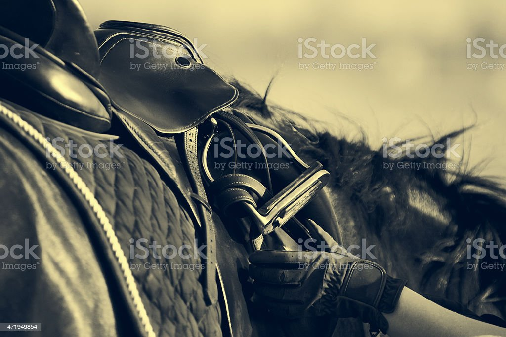 Saddle with stirrups on a back of a horse stock photo