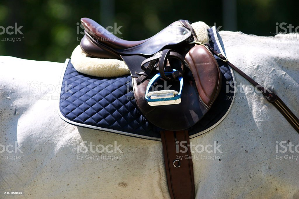 Saddle with stirrups on a back of a sport horse stock photo