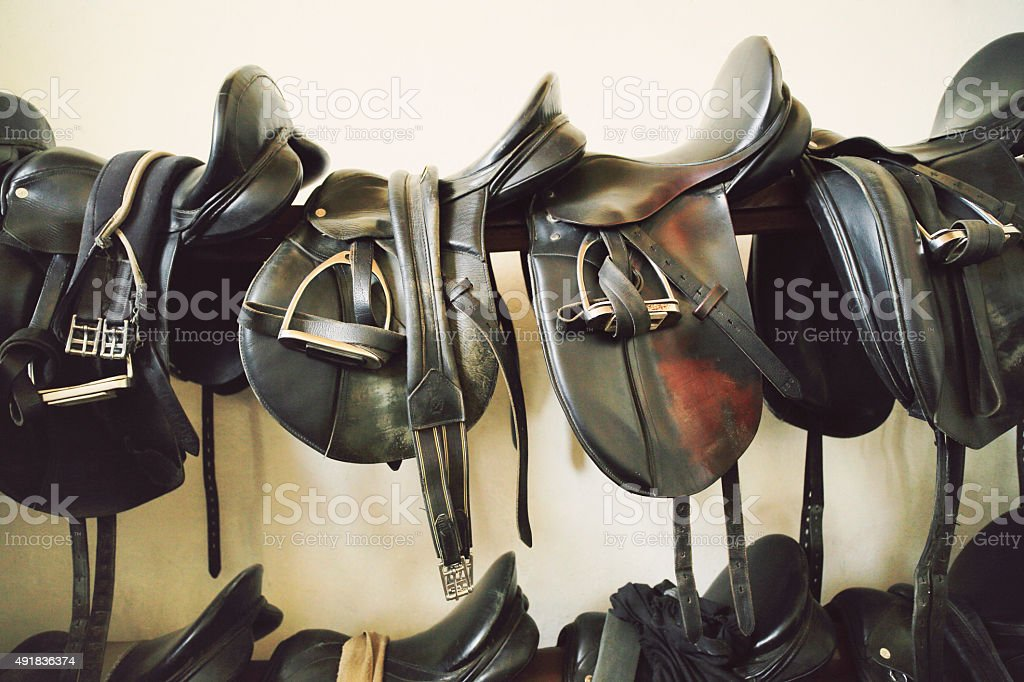 Saddles in tack room. stock photo