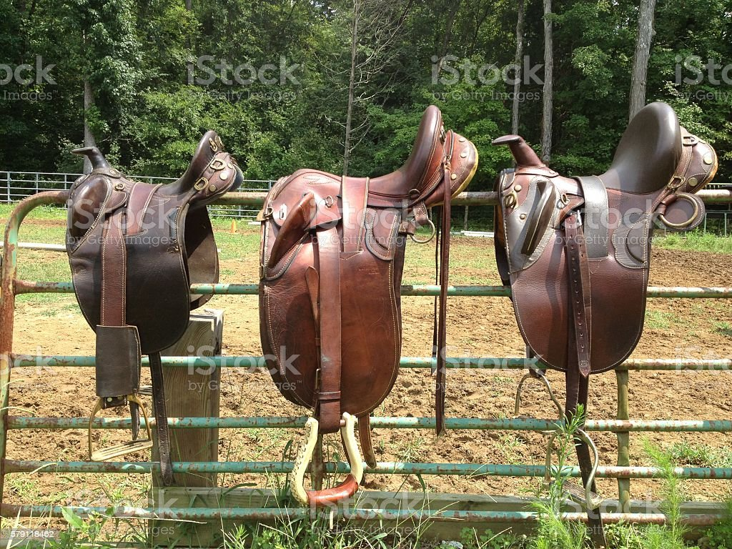 Saddles on a fence stock photo