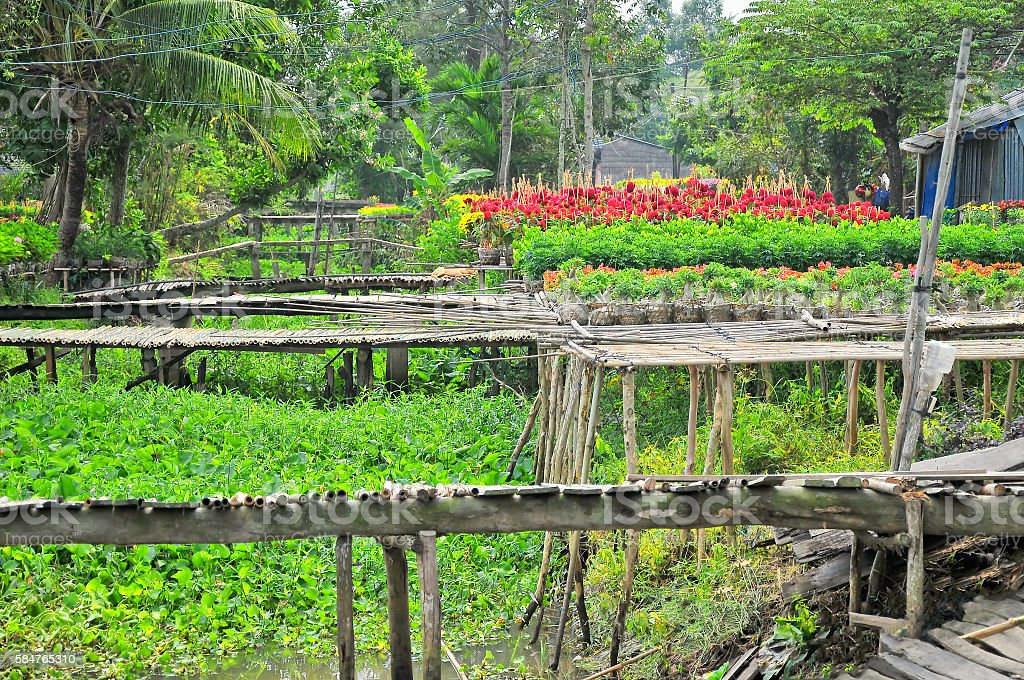 Sadec flower village in Sadec, Dong Thap, Mekong Delta, Vietnam stock photo